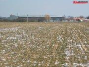 Prodej zemědělské půdy, Uherské Hradiště