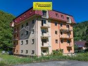 Prodej bytu 1+kk, Lipová-lázně - Horní Lipová