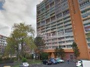 Prodej bytu 3+1, Chomutov