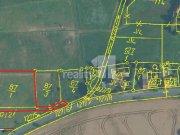 Prodej pozemku pro bydlení, Chlustina