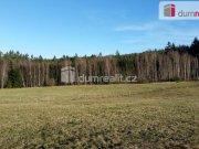 Prodej pozemku pro bydlení, Malšín