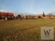 Prodej pozemku pro bydlení, Málkov