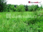 Prodej pozemku pro bydlení, Svinaře