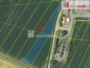 Prodej pozemku pro komerční výstavbu, Borovany