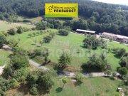 Prodej pozemku pro bydlení, Podhradí