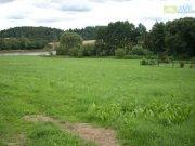 Prodej pozemku pro bydlení, Zvěstov - Hlohov